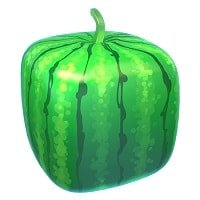 Strolling Staxx Melon