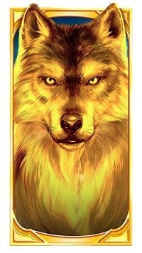 Gold Wolf-min