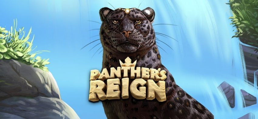 Panthers Reign Quickspin Banner