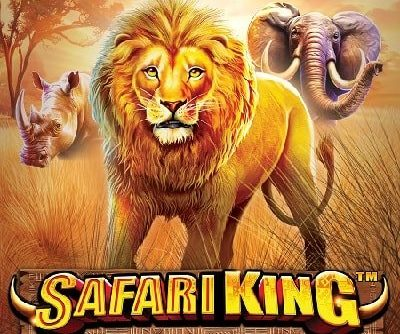 Safari King logo