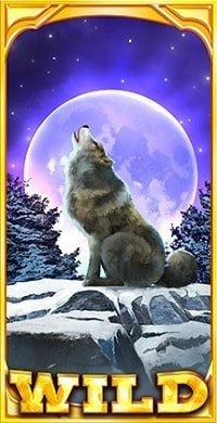 Wild Moon-min
