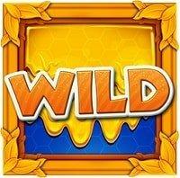 Wild Swarm honning wild