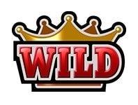 hit it big wild