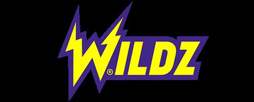 Wildz Casino Logo Transparent