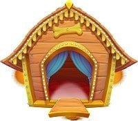 dog house wild